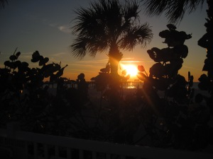 clearwater 113
